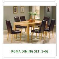 ROMA DINING SET (1+6)